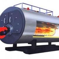 生物质锅炉厂家蒸汽锅炉厂家WNS型.DZG型